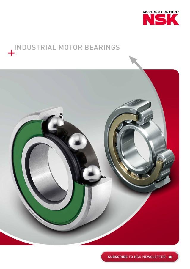Industrial Motor Bearings