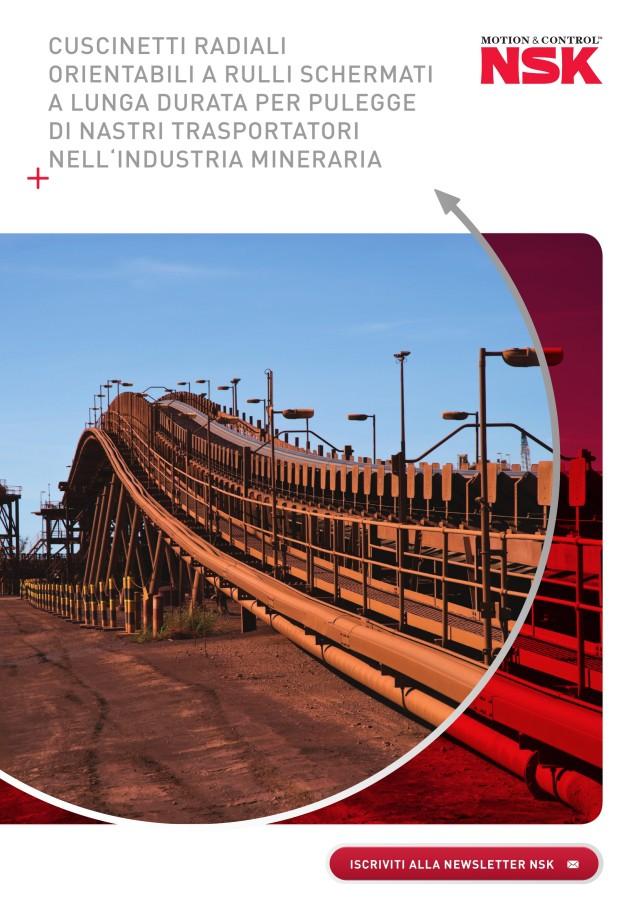 Cuscinetti radiali orientabili a rulli schermati a lunga durata per pulegge di nastri trasportatori nell'industria mineraria